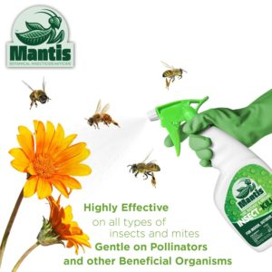 Mantis botanical insecticide