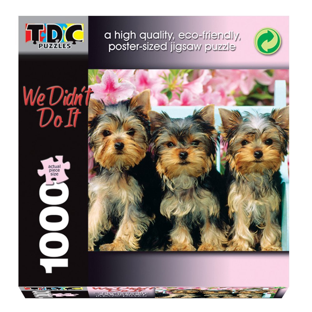 TDC Games eco-friendly puzzle