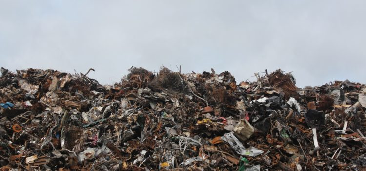 Make A Change: Stop Food Waste!
