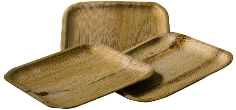 Eco-friendly Disposable Bamboo Plates – A Great Alternative To Plastic Ones