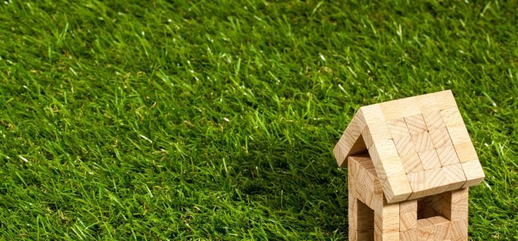 5 Green Products Facts To Increase Your Eco-Friendly Awareness