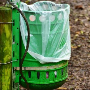Best Biodegradable Trash Bags To Reduce Plastic Pollution Hazards
