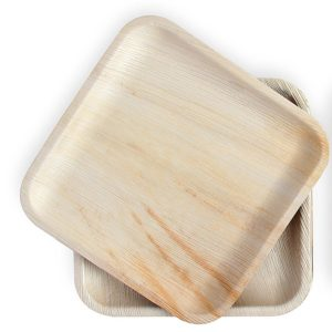 Biodegradable Leaf Plates - Serve Your Food In An Eco-Friendly Dinnerware