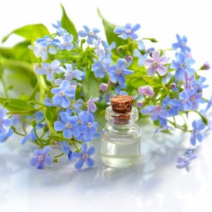 Non-Comedogenic Oils For Face - Skin Care With No Clogged Pores
